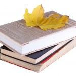 Books and autumn leaf — Stock Photo #35842859
