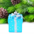 Christmas decorations, Christmas tree branch, isolated on white — Stock Photo #35946369