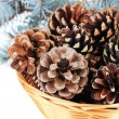 Beautiful pine cones in wicker basket close-up — Stock Photo