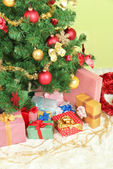 Decorated Christmas tree with gifts on green wall background — Stock Photo
