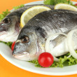 Dorado fish on table close-up — Stock Photo