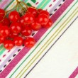 Red berries of viburnum on fabric background — Stock Photo