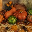 Pumpkins in basket and watermelons and wooden tub on straw on sackcloth background — Stock Photo