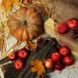 Pumpkin and apples with bark and bumps on wooden background — Foto Stock #35999785