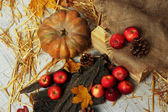 Pumpkin and apples with bark and bumps on wooden background — Stock Photo