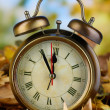Old clock on autumn leaves on wooden table on natural background — Stock Photo #36001085