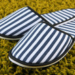 Stock Photo: Striped slippers on carpet background