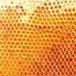 Yellow beautiful honeycomb with honey, background — Stock Photo #36115951