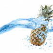 Stock Photo: Pineapple dropped into water