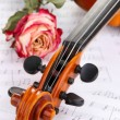 Classical violin with dry rose on notes — Stock Photo #36117091