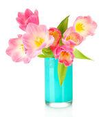 白で隔離される明るい花瓶のピンクのチューリップ — ストック写真
