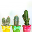 Collection of cactuses in bright pails on wooden table — Stock Photo #36121841