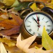 Old clock on autumn leaves close-up — Foto Stock
