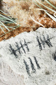 Counting days by drawing sticks on stone close up — ストック写真
