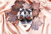 Maschera su sfondo d'oro tessuto — Foto Stock