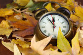 Old clock on autumn leaves close-up — Zdjęcie stockowe