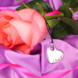 Beautiful pink rose with heart pendant — Stock Photo #36231373