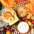 Outdoors picnic close up — Lizenzfreies Foto