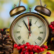 Old clock on autumn leaves on wooden table on natural background — Stock Photo #36235471
