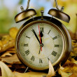 Old clock on autumn leaves on wooden table on natural background — Stockfoto #36235641