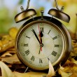 Old clock on autumn leaves on wooden table on natural background — Stock fotografie #36235641