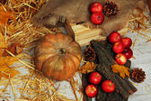 Pumpkin and apples with bark and bumps on wooden background — 图库照片