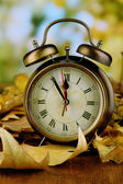Old clock on autumn leaves on wooden table on natural background — Stock fotografie