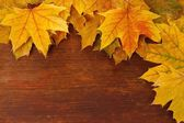 Yellow maple leaves on wooden background — Stock Photo