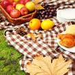 Outdoors picnic close up — Photo