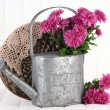 Bouquet of pink chrysanthemum in watering can on white wooden background — Stockfoto