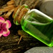 Bottle with basics oil on tree bark and stones close up — Stock Photo #36484265