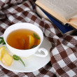 Cup of tea with ginger on plaid with a book — Stock Photo