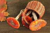 Red amanitas in basket, on wooden background — Stock Photo