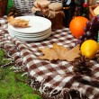 Outdoors picnic close up — Stok fotoğraf