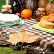 Outdoors picnic close up — Stock fotografie