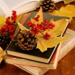 Books and autumn leaves on wooden table close-up — Foto Stock