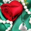Beautiful red rose with heart pendant — Stock Photo #36569973