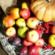 Autumn composition of fruits and pumpkins on table close-up — Stock Photo #36572767
