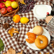 Outdoors picnic close up — Foto Stock
