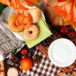 Outdoors picnic close up — Stock Photo