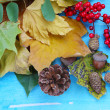 Frame from autumn leaves on wooden table close-up — Stock Photo #36599681