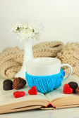 Cup with knitted thing on it and open book close up — Fotografia Stock