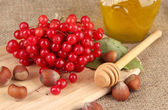 Red berries of viburnum with honey and nuts on sackcloth background — Stock Photo