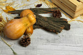 Pumpkins with bark and bumps on wooden background — 图库照片