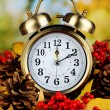 Old clock on autumn leaves on wooden table on natural background — Stock Photo #36601339