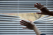 Female hand separating slats of venetian blinds with a finger to see through — Stock Photo