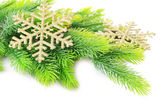 Dekorativní vánoční vločky na jedle, izolované na bílém — Stock fotografie