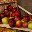 Ripe apples in basket on shelf close up — Stock Photo