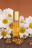 Women's perfume in beautiful bottle with camomiles on brown background — Stock Photo