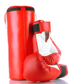 Boxing gloves and punching bag, isolated on white — Stock Photo
